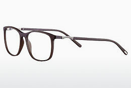Eyewear Strellson ST1285 100 - Brown