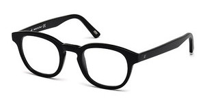 Web Eyewear WE5203 002