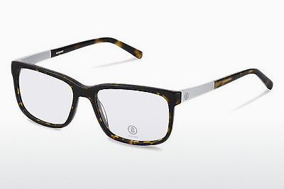 Eyewear Bogner BG515 C - Brown, Havanna