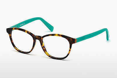 Eyewear Just Cavalli JC0684 053 - Havanna, Yellow, Blond, Brown