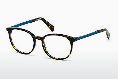 Eyewear Just Cavalli JC0708 053 - Havanna, Yellow, Blond, Brown