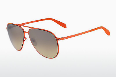 Ophthalmic Glasses Calvin Klein CK2138S 286 - Orange