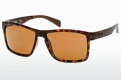 Ophthalmic Glasses Timberland TB9081 52H - Brown, Dark, Havana