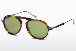 Ophthalmic Glasses Tod's TO0205 53N - Havanna, Yellow, Blond, Brown