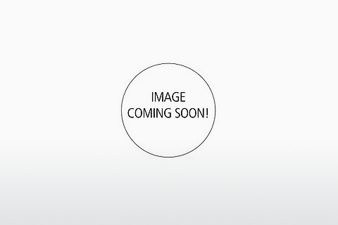 Ophthalmic Glasses Tod's TO0242 55J